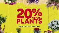 Master Home Improvement 20% OFF All Plants tvc ad