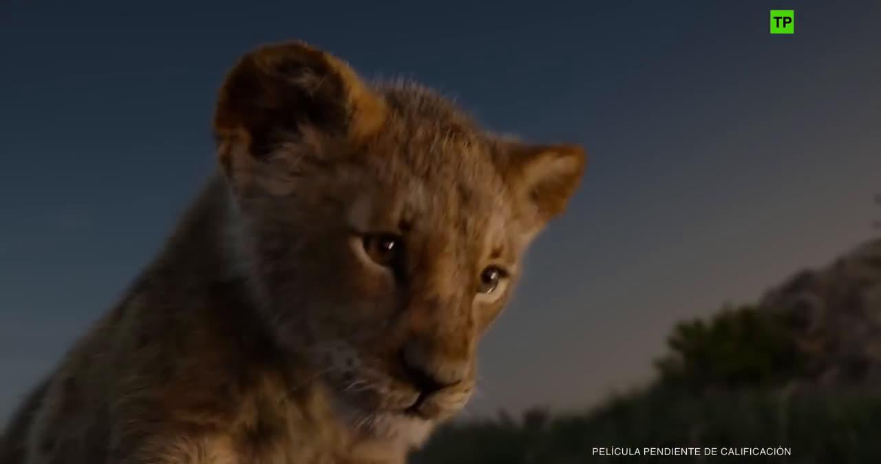 Trailers y Estrenos El Rey León - Trailer final español (HD) anuncio