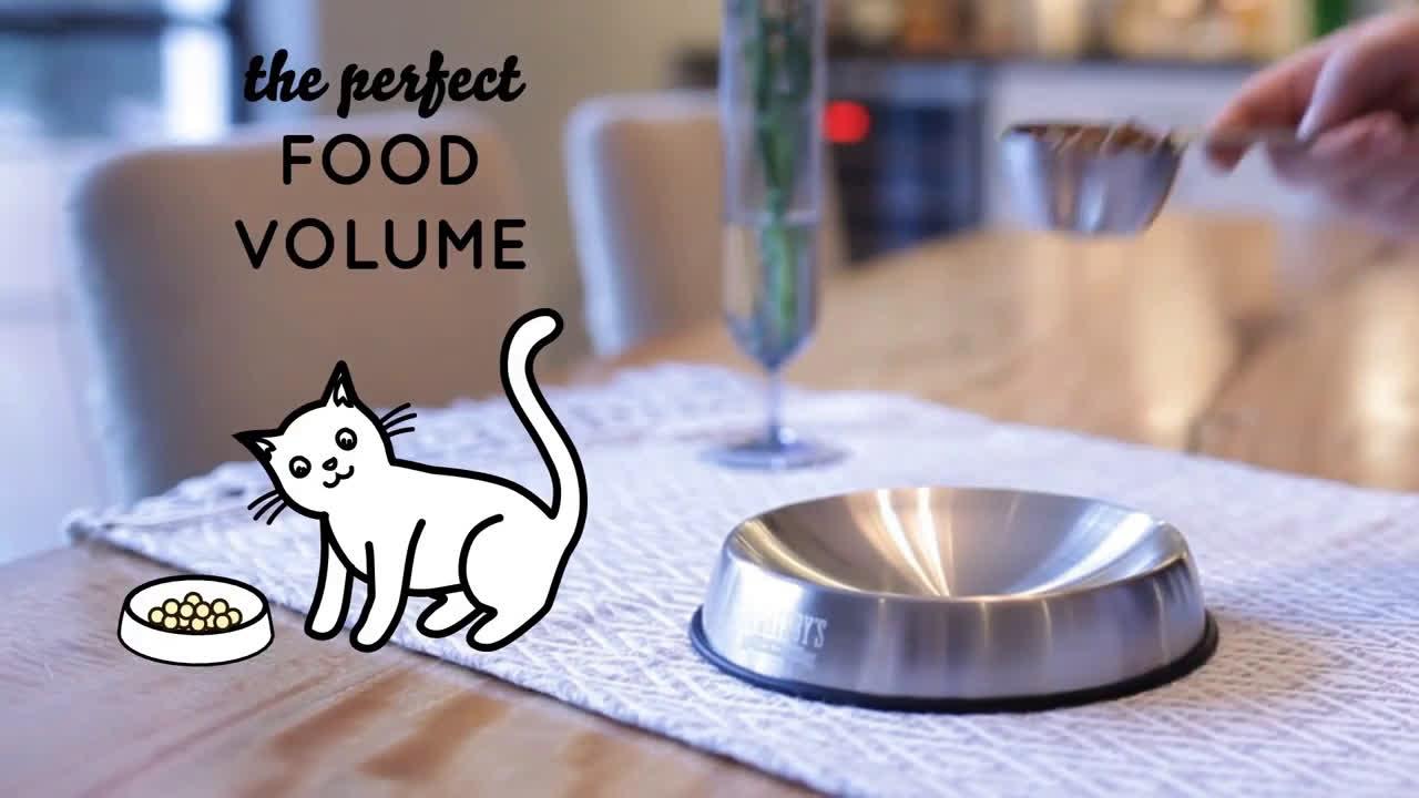 Tienda Animal Comedero ergonómico para gatos Dr Catsby´s anuncio