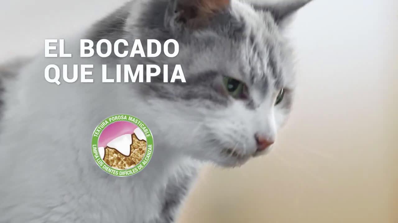 Purina DentaLife® - Snack dental para gatos anuncio