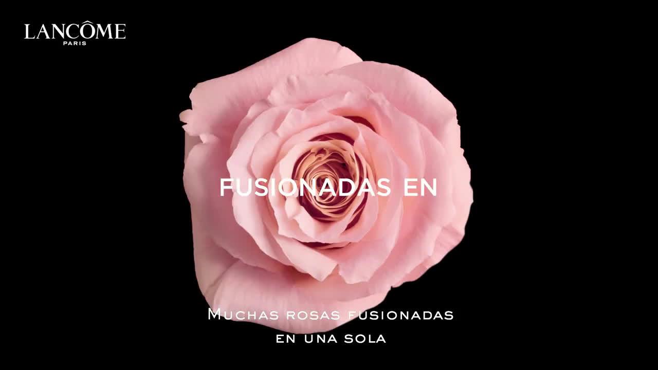 Lancome Conoce los ingredientes del nuevo perfume de rosas IDÔLE anuncio