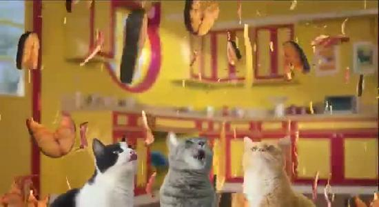 New Purina Cat Food Commercial