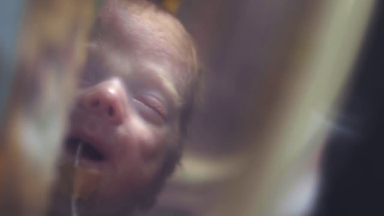 Pampers Little Fighters advert