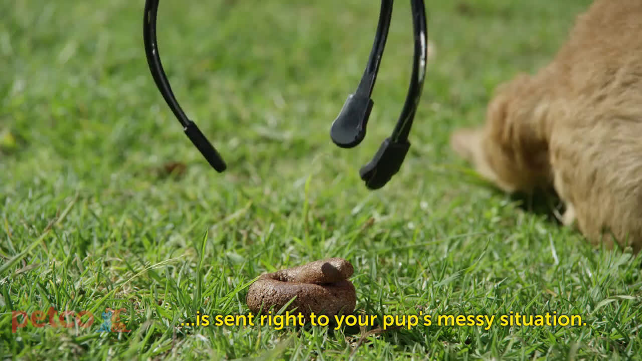 ▷ Petco Introducing the Petco DooDoo Drone! Ad Commercial on TV