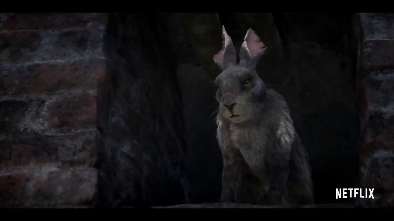 Netflix Watership Down...