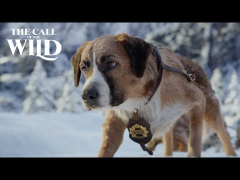 The Call of the Wild | Wild Places Clip | 20th Century Studios Trailer